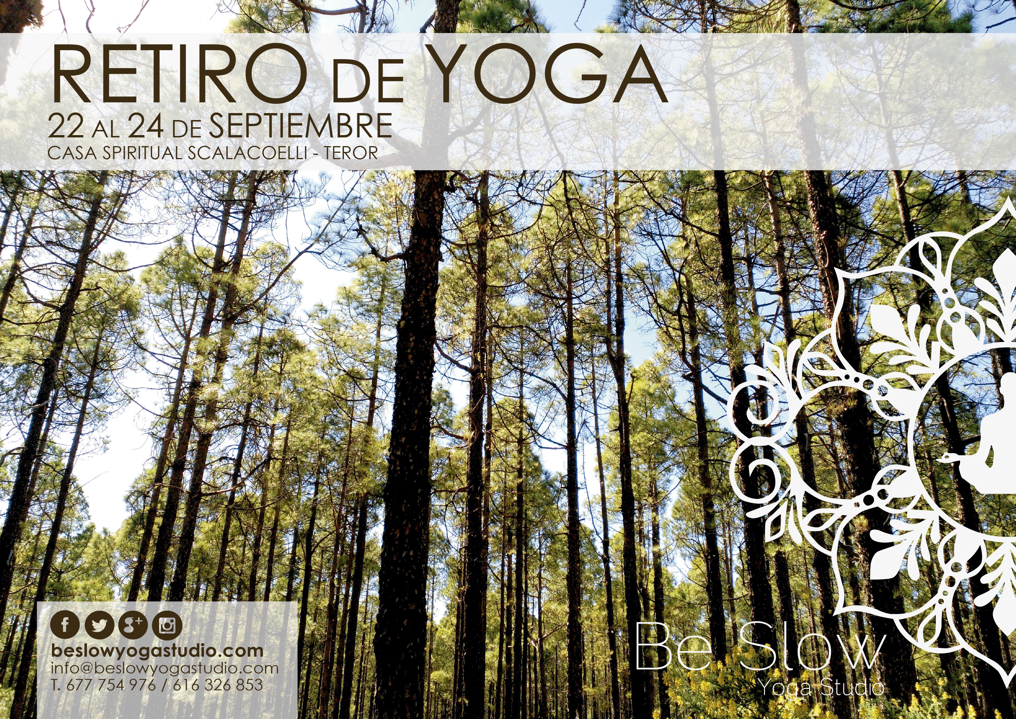 Retiro de Yoga en Gran Canaria